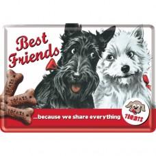 Best Friends - Metalna razglednica